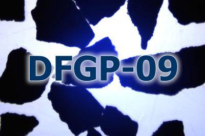 碳化硅混合堆积涂附爱购彩票appDFGP-09